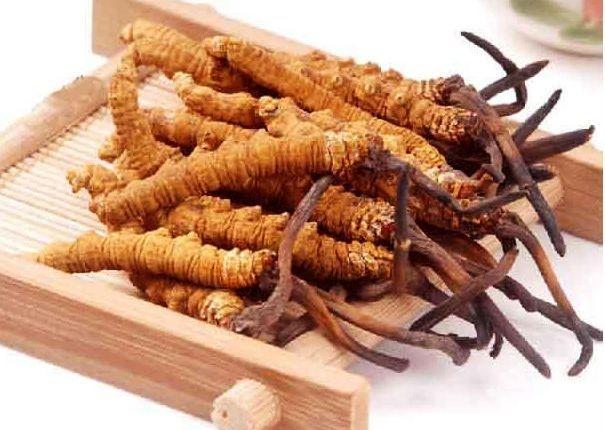 Sản phẩm là sự kết hợp giữa linh chi và đông trùng hạ thảo