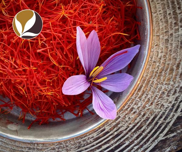 Hồng hoa Tây Tạng - Phúc Nguyên Đường