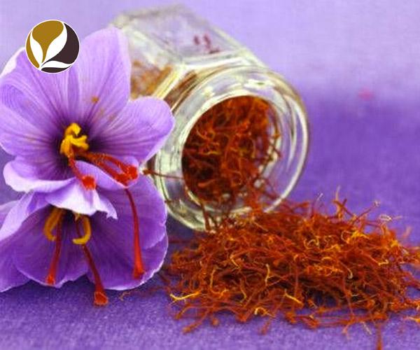 Saffron Tây Tạng – gia vị cho cuộc sống