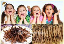 Đông trùng hạ thảo có sử dụng ở trẻ nhỏ được không?