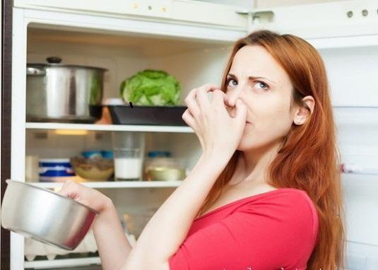 Ngăn ngừa mùi hôi khó chịu cho tủ lạnh